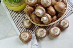 Agaricus bisporus - Fresh raw mushroom champignon wicker baskett Royalty Free Stock Images