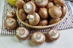 Agaricus bisporus - Fresh raw mushroom champignon wicker baskett Stock Photo