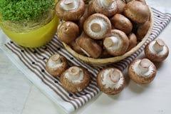 Agaricus bisporus - Fresh raw mushroom champignon wicker baskett Royalty Free Stock Image