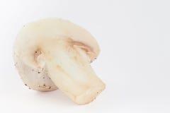 Agaricus bisporus récemment récolté de champignon Photos stock