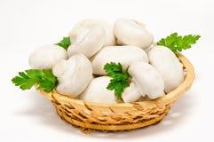 Agaricus blanc de champignon de couche de champignon de paris dans le panier Photographie stock libre de droits