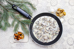 Agaricus mushroom sauce in frying pan Stock Photography