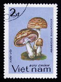 Agaricus silvaticus, series, circa 1983. MOSCOW, RUSSIA - FEBRUARY 12, 2017: A stamp printed in Vietnam shows Agaricus silvaticus, series, circa 1983 Stock Photography