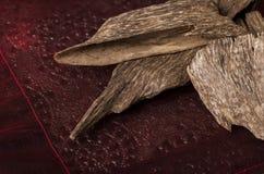 Agarwood kadzidła układy scaleni Fotografia Stock