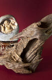 Agarwood op abstracte meroonachtergrond Royalty-vrije Stock Afbeeldingen
