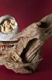 Agarwood på abstrakt meroonbakgrund Royaltyfria Bilder