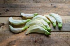 Agasta, organicznie warzywo Zdjęcia Royalty Free
