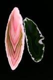 Agat piękny, kolorowy plasterek Obraz Royalty Free
