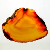 Agat-Ukrainian minerals Stock Images