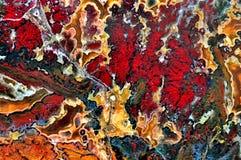 Agat z naturalnymi kolorami Zdjęcie Stock