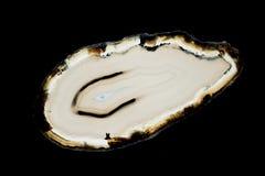 Agata plasterek Fotografia Royalty Free