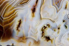 Agate Photos stock