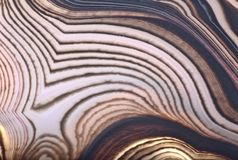 Agate contrast light and dark brown lines. Background with contrast agate structure stock photo