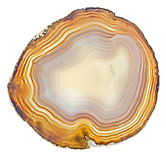 Agate Slice Royalty Free Stock Photography
