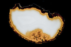 Agate slice Royalty Free Stock Image