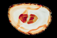 Agate slice Stock Images