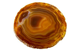 Agate slice of the rock Stock Images
