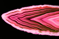 Agate slices Royalty Free Stock Photography
