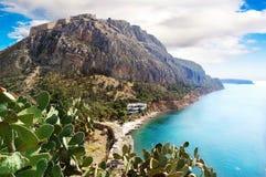 Agave perto do mar, Grécia Fotos de Stock