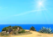 Agave plant on sunshiny coast. Summer sea  sunshiny coast landscape with Agave plants Stock Photo