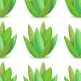Agave - vector seamless pattern Stock Image