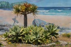 Agaw rośliny z malowidłem ściennym Obraz Stock