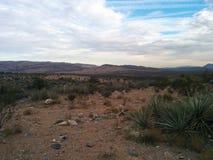 Agaw skały w pustyni z górami i rośliny, chmurny niebieskie niebo Fotografia Royalty Free
