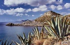 Agawa na skalistym wybrzeżu morze śródziemnomorskie Obraz Stock