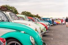 AGDE, FRANCES - 9 SEPTEMBRE 2017 : Groupe de scarabées de Volkswagen exhibés au cours de la 16ème réunion de Volkswagen du ` Agde Images stock