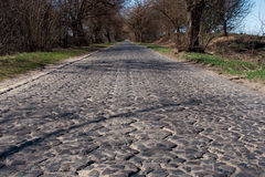 Age-old stone road. Old road built with stone hexagons at early spring. Volyn, Ukraine Royalty Free Stock Photography