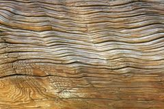 Age of Wood. Abstract textured background Royalty Free Stock Images