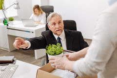 Aged bearded employer firing manager from the company Stock Image