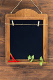 Aged blackboard with chilli peppers and parsley hanging on wooden wall Stock Photography