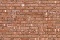 Aged Brick Wall Royalty Free Stock Image