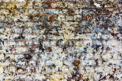 Aged Brick Wall. Painted brick wall in a poor state of repair Royalty Free Stock Photo