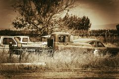Aged Cars Graveyard Royalty Free Stock Photo