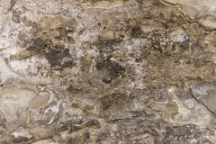 Aged cement wall texture. Royalty Free Stock Image