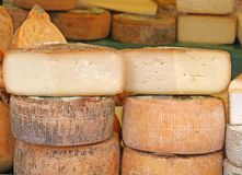Aged cheese on sale in the local market stall Stock Images