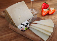 Aged cheese with wine Stock Photography