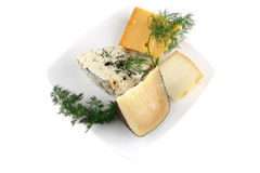 Aged cheeses on white porcelain Royalty Free Stock Photo