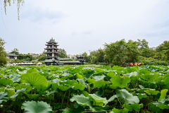 Free Aged Chinese Tower In Lake Of Lotuses On Cloudy Summer Day Royalty Free Stock Photos - 44437798