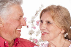 Aged couple portrait Stock Image