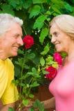 aged cute couple Stock Photo
