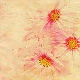 Aged elegance flower paper Stock Image