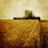 Aged field royalty free stock images