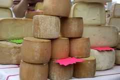 Aged french cheese wheels stacked Royalty Free Stock Photo