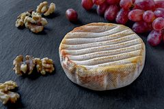 Aged French soft cheese with red bacterial smear from the Vosges mountains. Aged French soft cheese with red bacterial smear  from the Vosges mountain range. Red royalty free stock photo