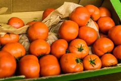 Aged Garden Tomato. Aged and not so fresh garden tomato on a local market and grocery store in the country Turkey Stock Photo