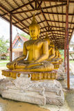 Aged golden buddha in row Stock Images