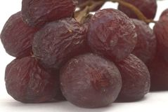 Aged grapes. On white background Royalty Free Stock Photos